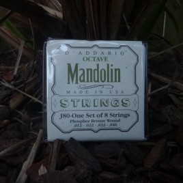 OCTAVE MANDOLIN STRINGS (set of 8)