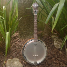 PHOENIX IRISH TENOR BANJO