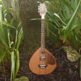 "THE ""TRAD"" ROYALE OCTAVE MANDOLIN – 22-1/4″ scale – Cedar top"
